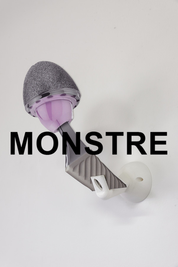 Commission d'équivalence master Art – 2019-2020 : « Monstre »